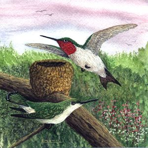 the nest is ready - wildlife in watercolor