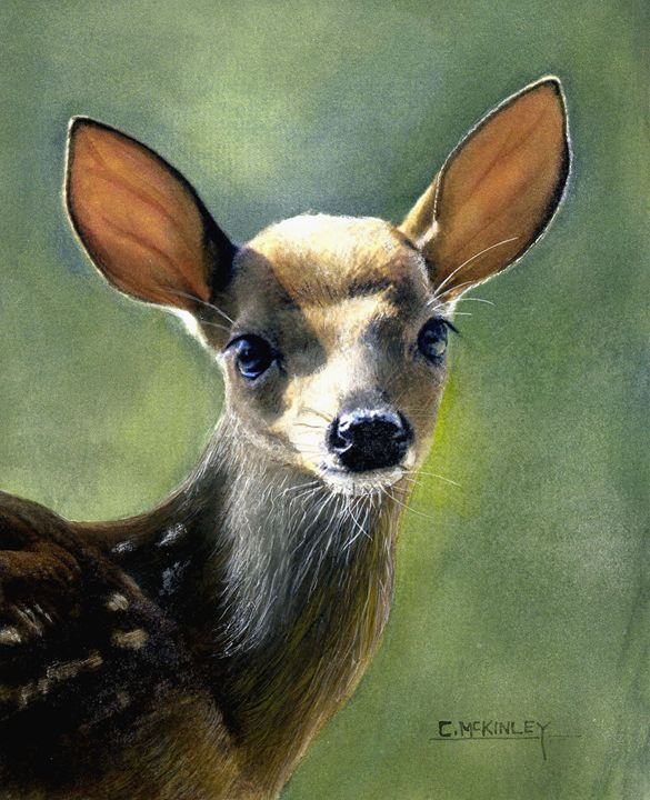 baby face - wildlife in watercolor