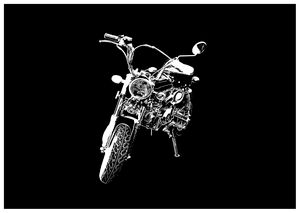 Monkey Bike in Black & White