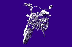 Monkey Bike on purple