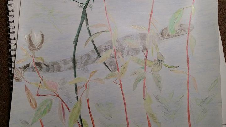 gators and the dragon fly - Steve Tambroni