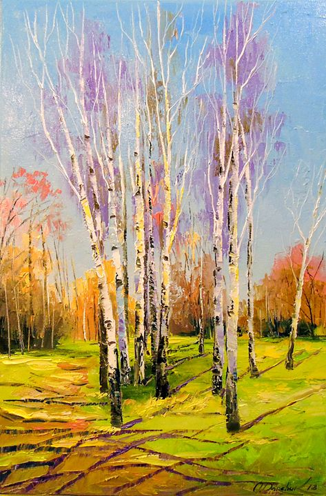 Birch trees on a Sunny spring day - Olha Darchuk