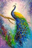 A magnificent peacock, oil painting