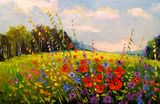 Summer, flowers, field art, landscap