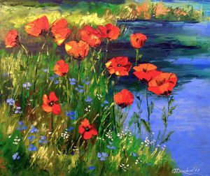 Poppies at the pond
