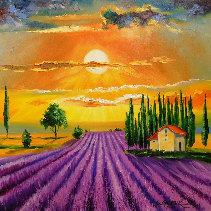 Lavender field at sunset - Olha Darchuk