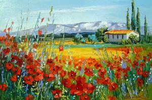 Poppy field near the mountains