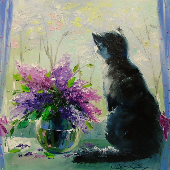 Cat Vaska - Olha Darchuk