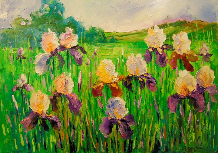 Irises in a meadow - Olha Darchuk