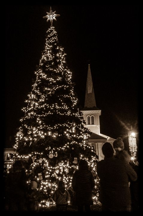 Christmas - Photography by Nicole