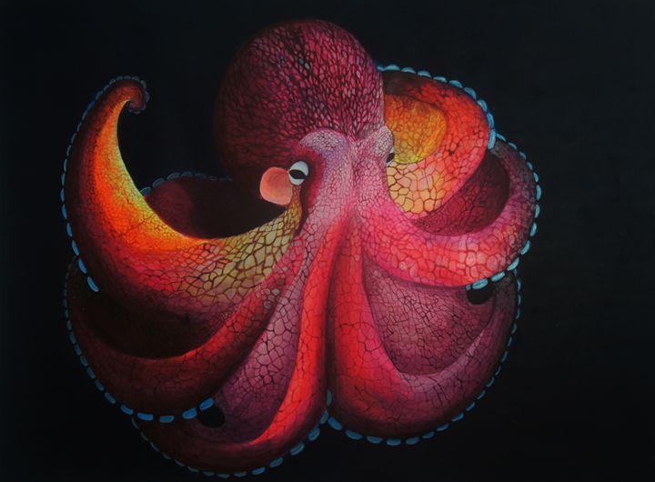 Luminant Octopus - Zio Marco