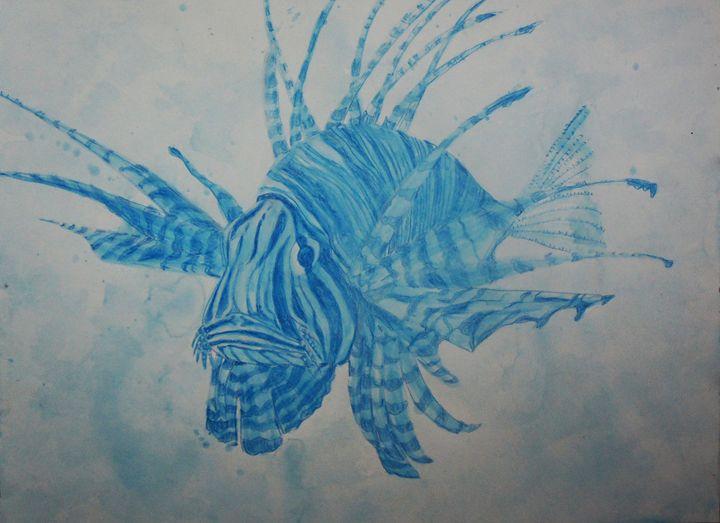 Blue Lionfish - Zio Marco