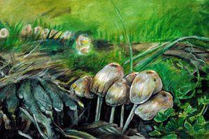 Little Family of Mushrooms