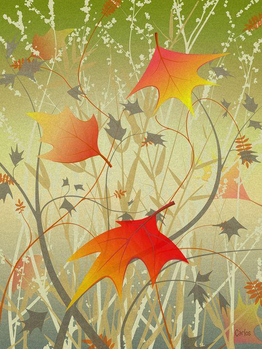 Autumn Foliage - Valley Dreams