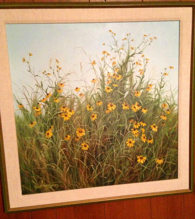 Texas Daisy's - Janet Montgomery