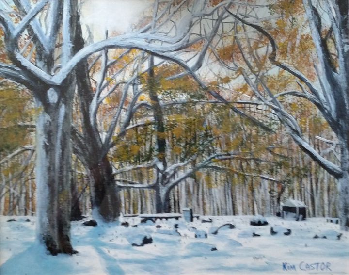 Washington DC area in winter - Kim Castor