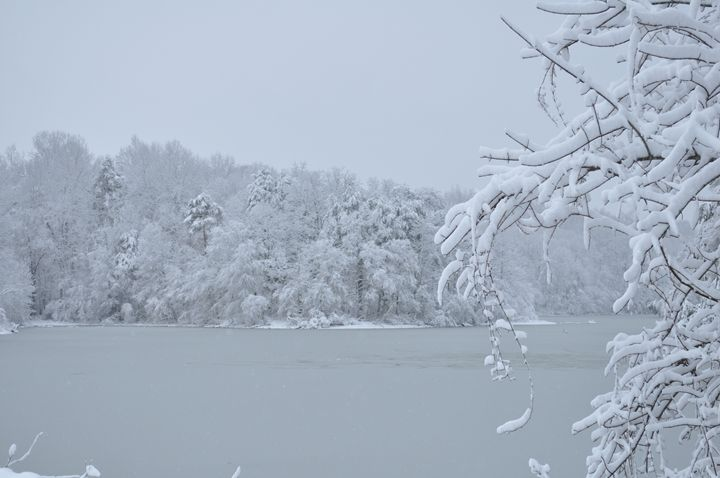 Frosted Lake - Cornerstone Images Photography