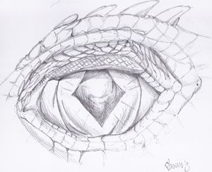Dragons Eye