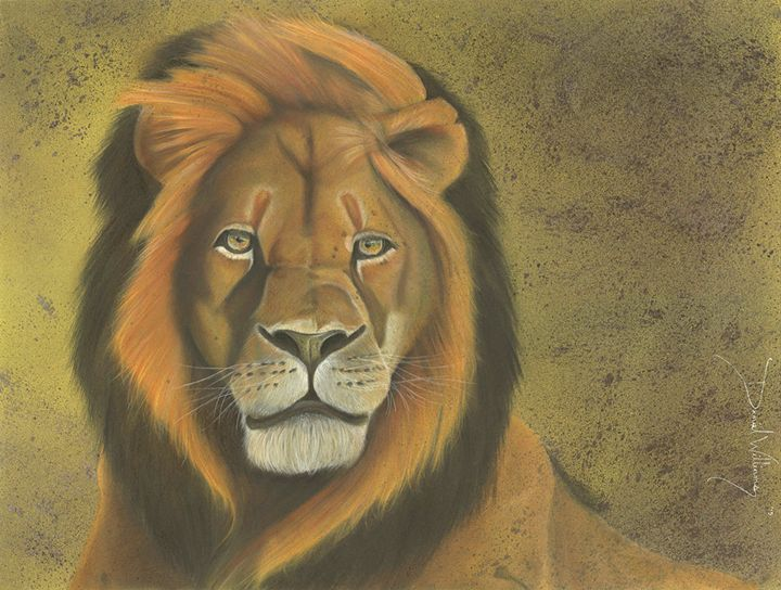 Cecil the Lion (Lion Heart) - Creations by DW