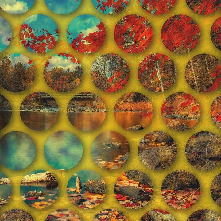 Landscape in Circles - Alex Danny