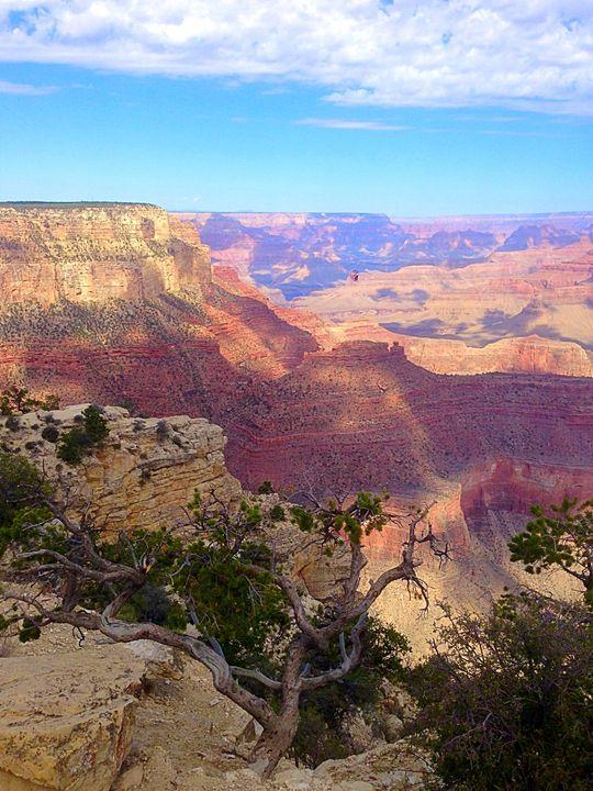 Grand Canyon - Ann Smith