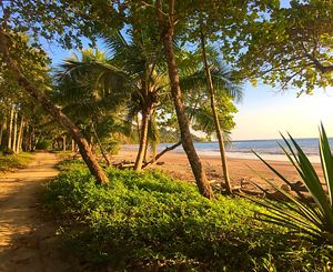 Playa Manzanillo Tres