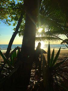 Playa Manzanillo Dos