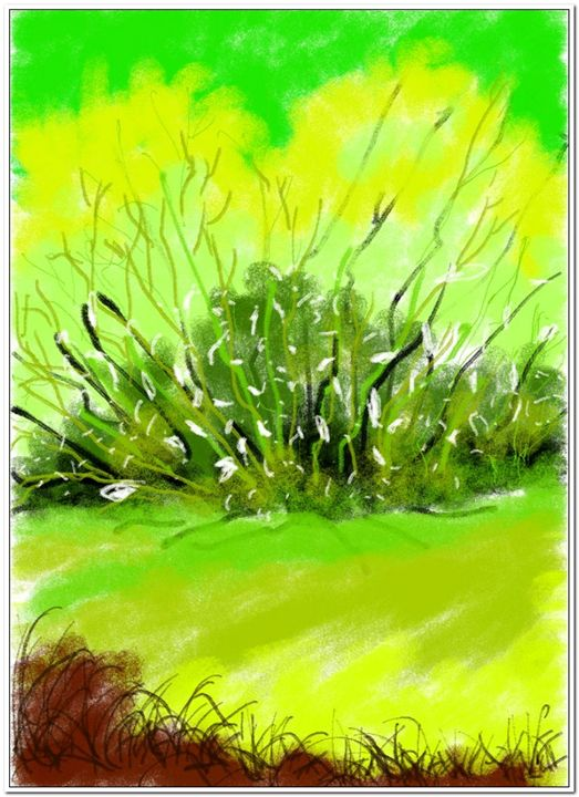 scenary0099 - Abstract Paintings