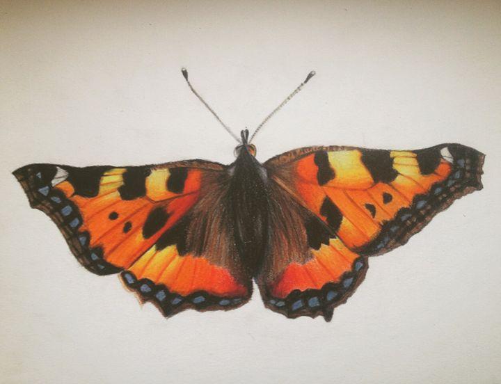 Tortoiseshell Butterfly - Art By Loz
