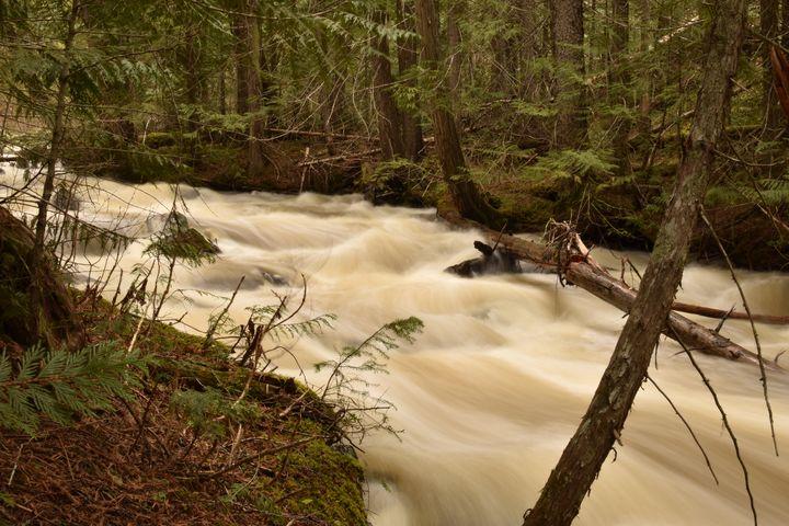 Creek Banks - Art of Ansichten