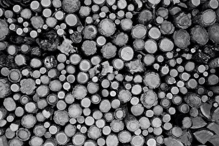 Log stack - Shutter Shock Images