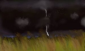Light show over the marsh - David R. Bedingfield