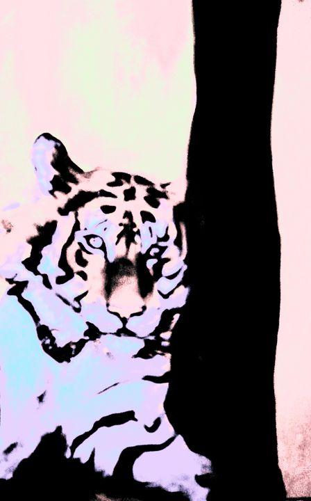 Tiger bright - Sarah Coleman