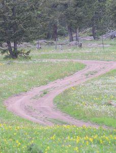 National park road