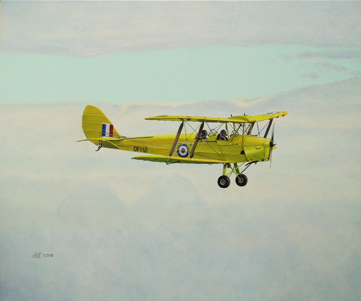 'Tigermoth' - Nicholas Peter Coker: Aviation Artist