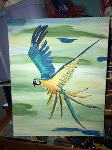 Soaring parrot