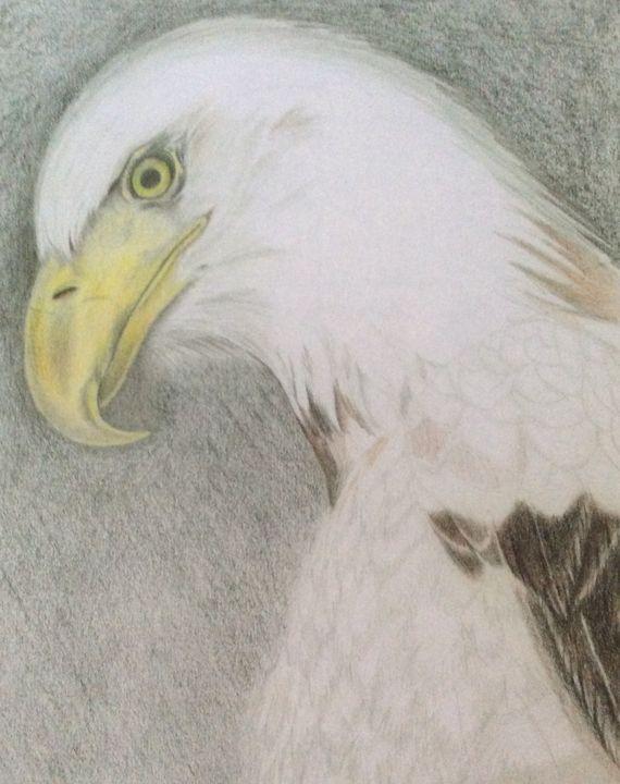Proud Bald Eagle - High Mountain Art