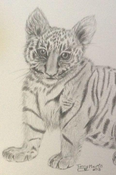 Tiger Kitten - High Mountain Art