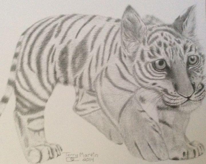 Tiger Kitten ready to pounce - High Mountain Art