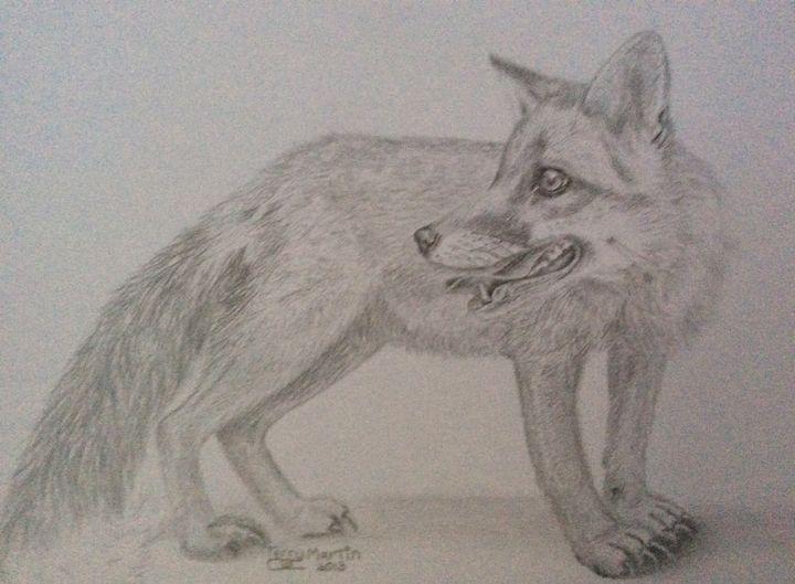 Foxy - High Mountain Art
