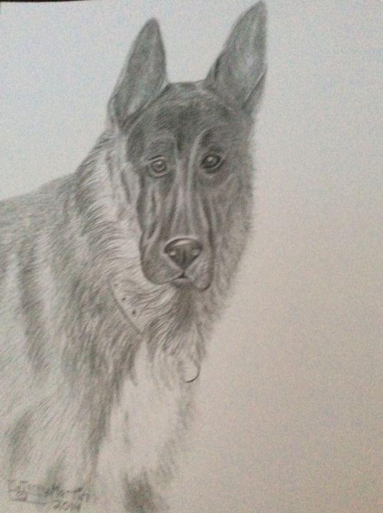 German Shepherd Working Police Dog - High Mountain Art