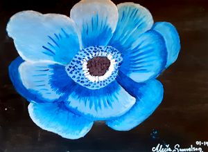 A Blue Beautiful Flower