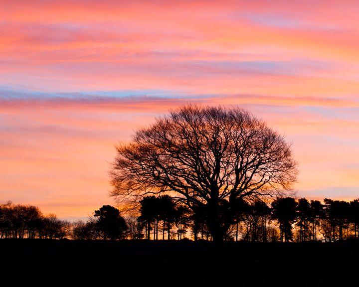 Sunrise - Mistynet Photography
