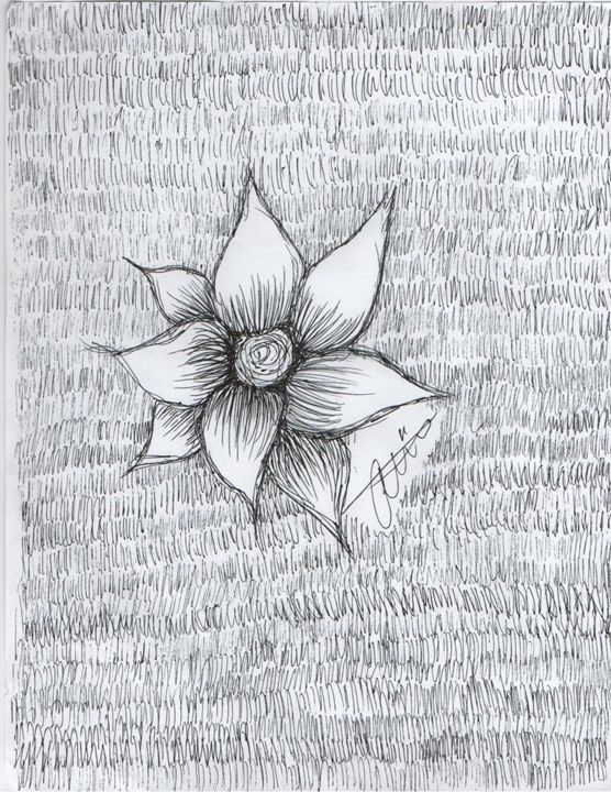"""Black and white flower"" - Amanda Westfall"