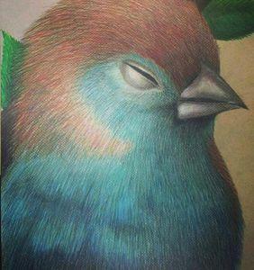 """Blue Bird"" - Amanda Westfall"