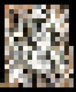 Nude Women - Amanda Bell