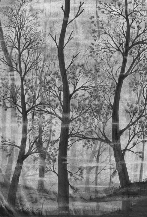 Foggy Forest - FINNTHE3RD