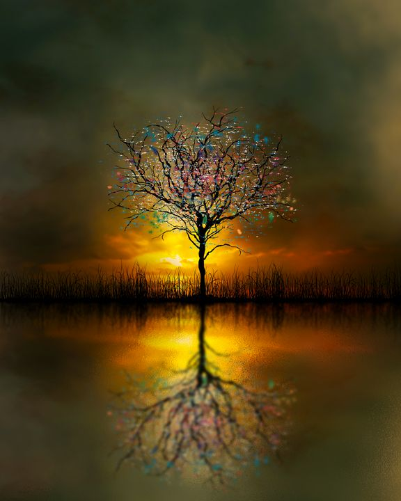 Rainbow Tree - Teds Art Page