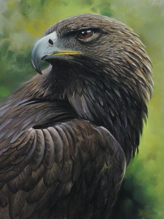 Charismatic Eagle - Rozller