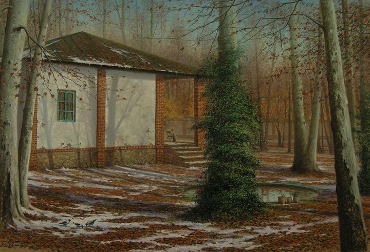 Old house Yard - Rozller